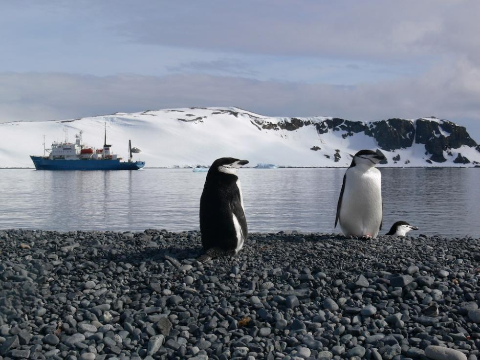 Antarctic Peninsula 11 days - 10 nights