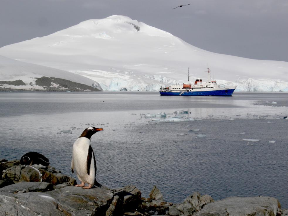 Antarctic Peninsula & South Shetland Islands 11 days - 10 nights