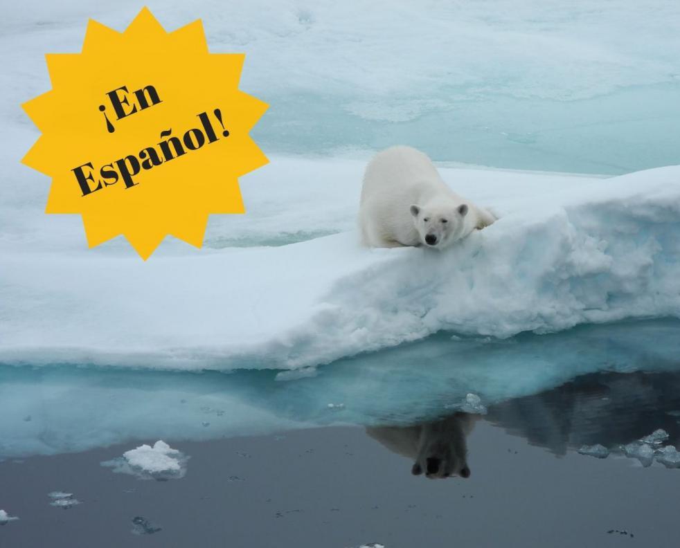 Alrededor de Spitsbergen * en Español *