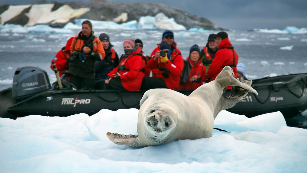 Antarctic Polar Circle - Discovery and Learning Voyage