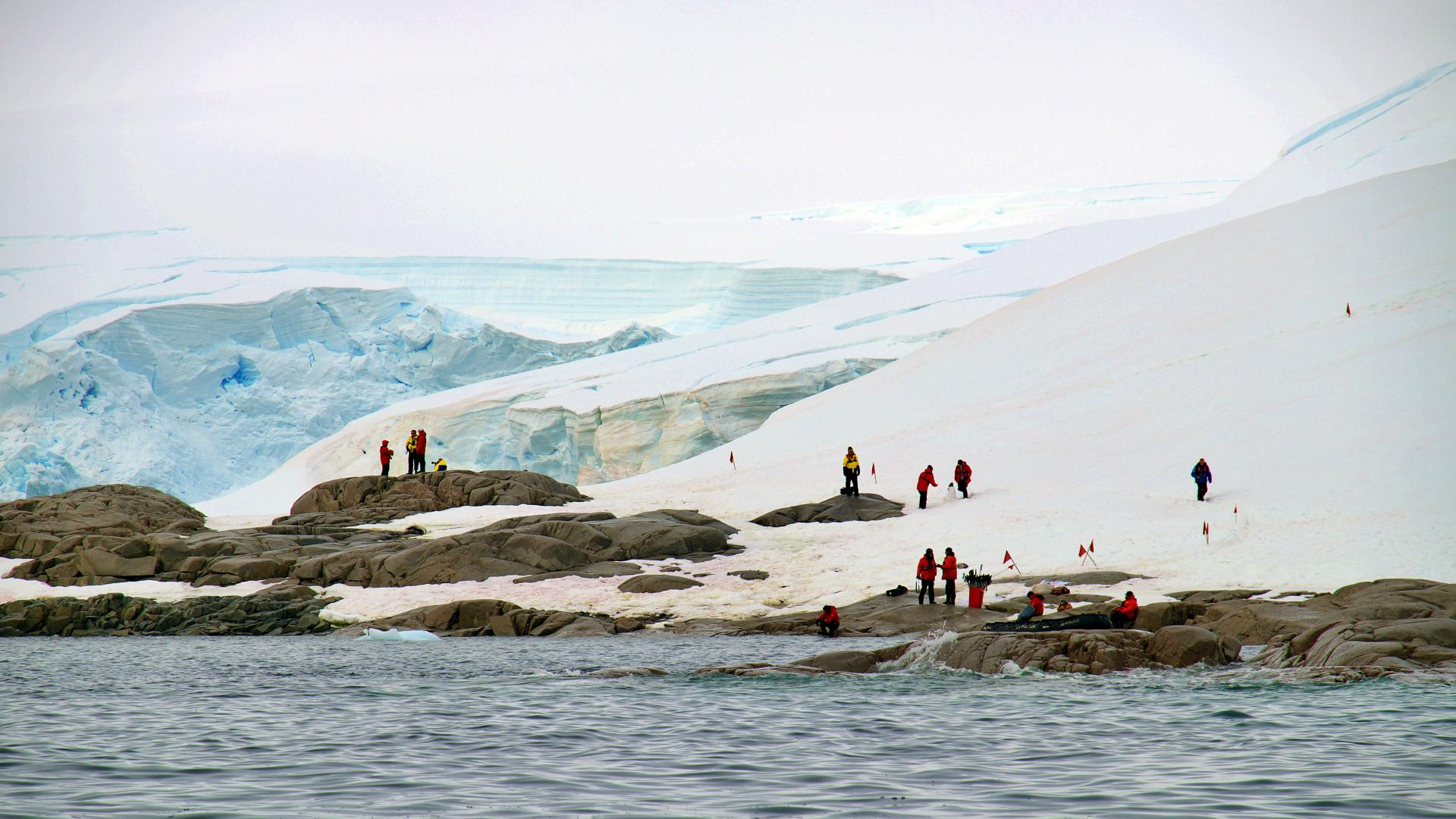 Antarctica: Discovery and Learning Voyage