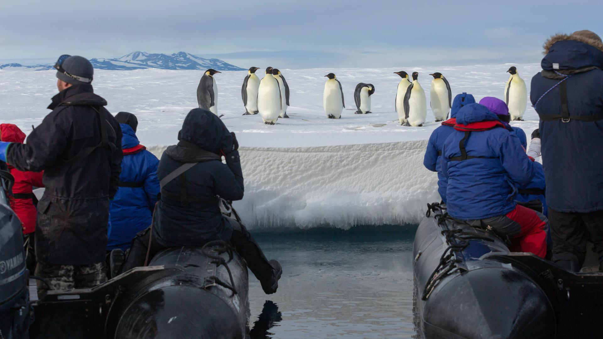 In the Wake of Scott and Shackleton: Ross Sea Antarctica