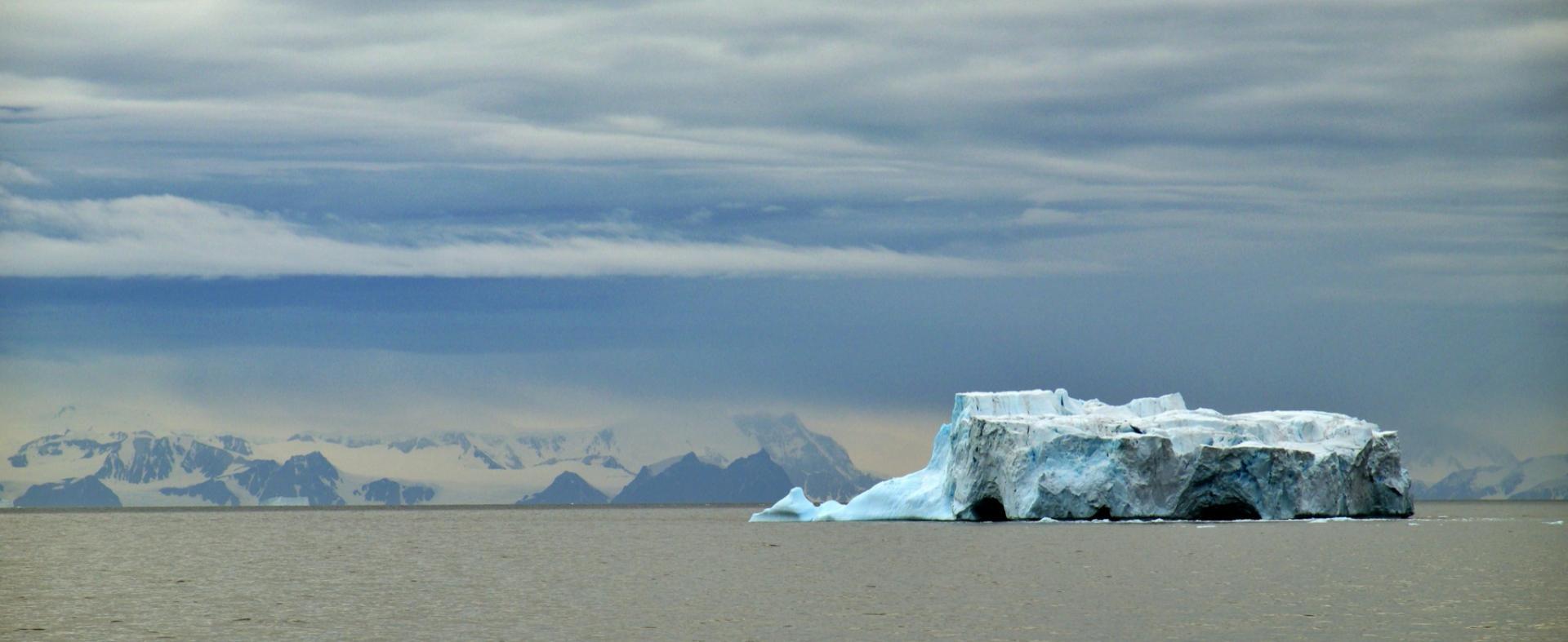 The Polar Travel Company